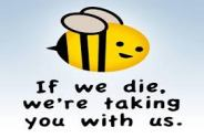 Bees taking us with them