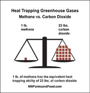 Methane vs CO2
